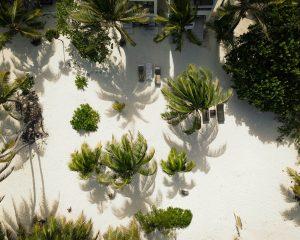Las Amapolas Aerial Beach Front